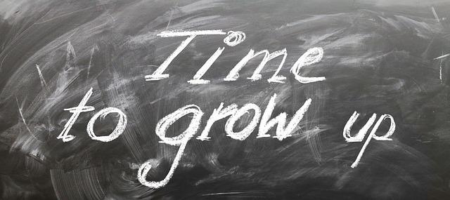 """Schild mit der Aufschrift """"Time to grow up"""""""